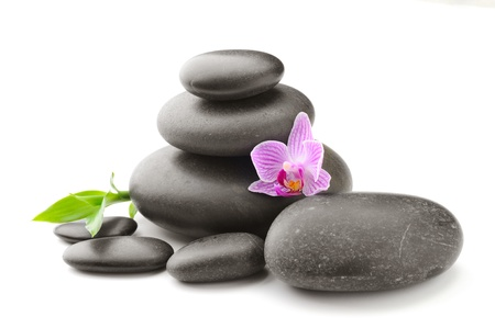 spa concept with zen stones and flower Stock Photo - 10099256