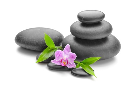 spa concept with zen stones and flower Stock Photo - 10099257