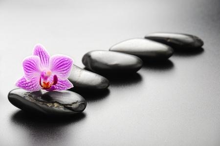 zen stones: concepto de spa con piedras zen y orqu�dea