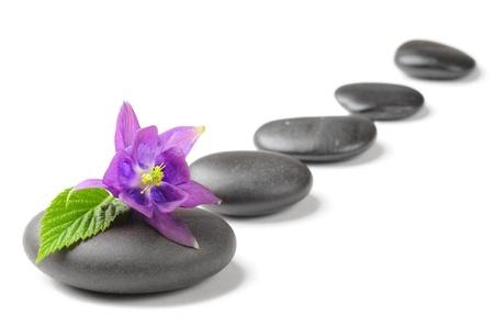 violeta: concepto de spa con piedras zen y flor Foto de archivo