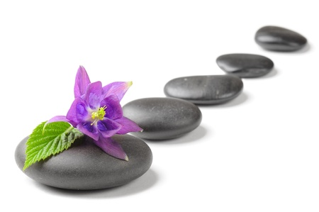zen rocks: spa concept with zen stones and flower Stock Photo