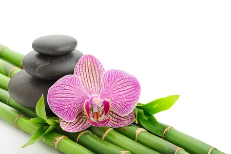group of plants: spa concept with zen stones and flower Stock Photo