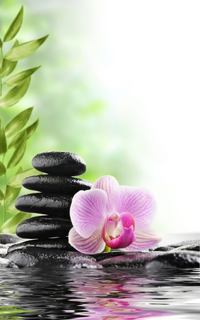massage stones: spa concept with zen stones and flower Stock Photo
