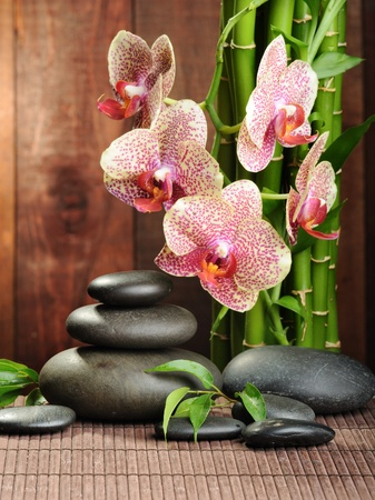 massage stones: zen basalt stones and orchid on the wood Stock Photo