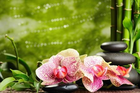 balanza: zen piedras de basalto y rosa orquídea amarilla Foto de archivo