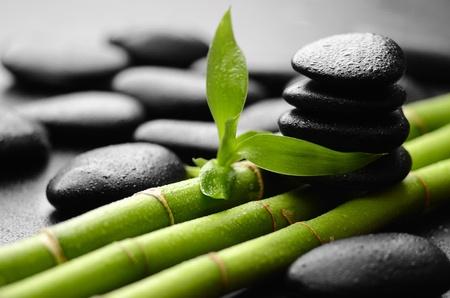 Zen Basaltsteinen und Bambus mit Tau