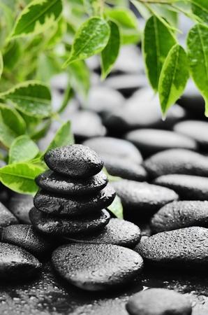 massage symbol: zen basalt stones and bamboo with dew