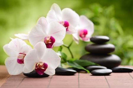orchidee: pietre di basalto zen e bambù sul legno Archivio Fotografico