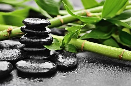 zen basalt stones and bamboo with dew