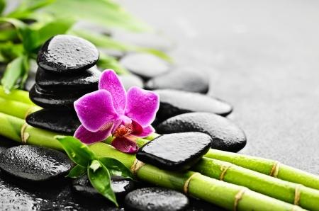 zen basalt stenen en orchidee met dauw Stockfoto