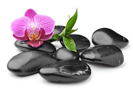 spa stones: zen basalt stones and orchid isolated on white Stock Photo