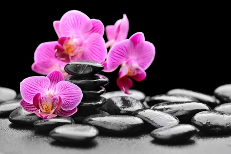 zen rocks: zen basalt stones and orchid with dew Stock Photo