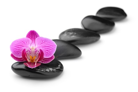 massage stones: zen basalt stones and orchid isolated on white Stock Photo