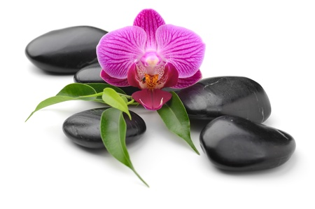 boulder rock: zen basalt stones and orchid isolated on white Stock Photo