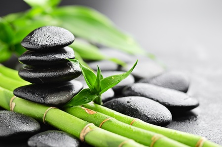 drop: zen piedras de basalto y de bambú con el rocío