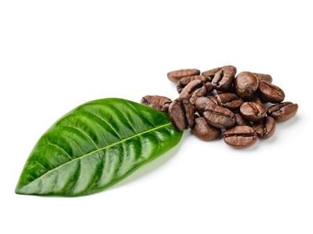 coffee grains: coffee grains and leaves