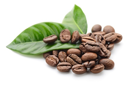 coffee grains and leaves Stock Photo - 13614367