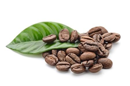 planta de cafe: los granos de café y las hojas Foto de archivo