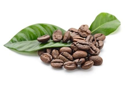 green bean: coffee grains and leaves