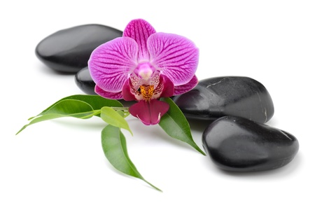 Zen Basaltsteinen und Orchidee isoliert auf weiß Standard-Bild
