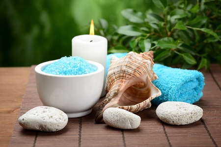 spa composition with shell and toning sea crystals Stock Photo - 15931032