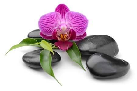 alternative wellness: zen basalt stones and orchid isolated on white Stock Photo