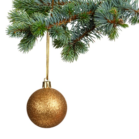 christmas fir: Merry Christmas and Happy New Year Stock Photo