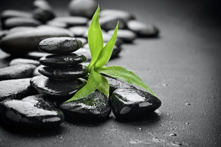 bamboo background: zen basalt stones on the black