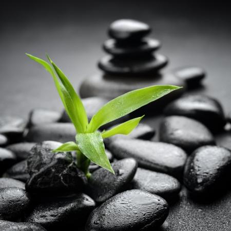 zen stone: zen basalt stones on the black