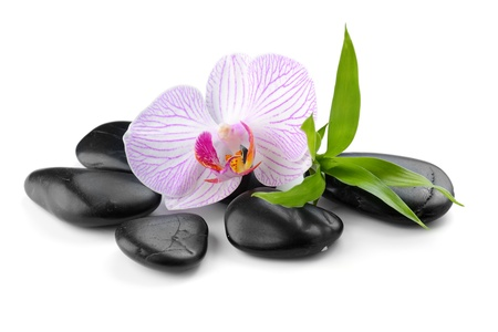 zen basalt stones and orchid isolated on white Stock Photo