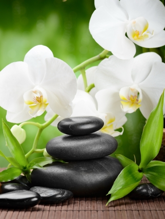 zen basalt stones and orchid on the wood Stock Photo - 17121257