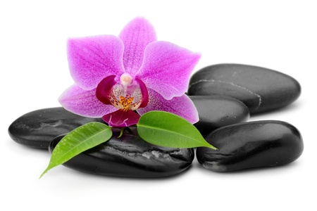 zen basalt stones and orchid isolated on white Imagens