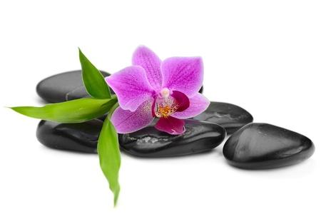 massage symbol: zen basalt stones and orchid isolated on white Stock Photo