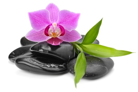 zen rocks: zen basalt stones and orchid isolated on white Stock Photo