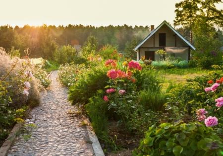 美しい庭の道 写真素材