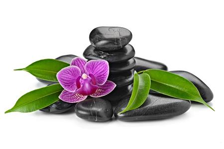 masoterapia: zen piedras de basalto y aislada de orqu?deas en blanco Foto de archivo