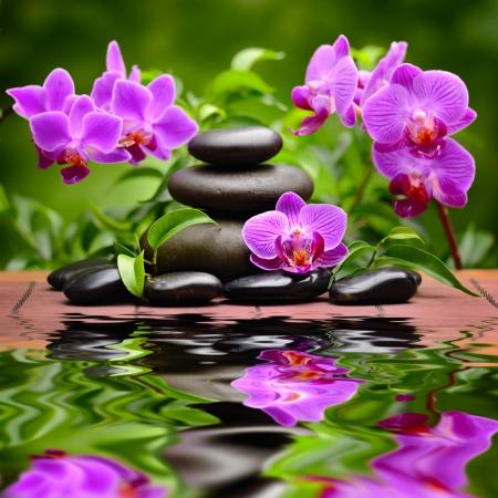 bambou: zen pierres de basalte et de l'orchidée