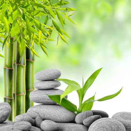 bamboo leaf: zen basalt stones and bamboo