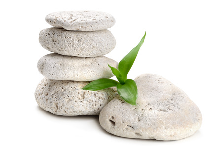 lucky plant: zen  stones and bamboo on the white Stock Photo