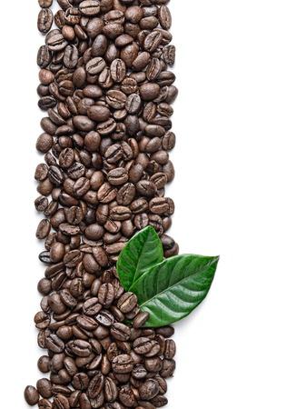 planta de cafe: granos de café y hojas Borde Foto de archivo