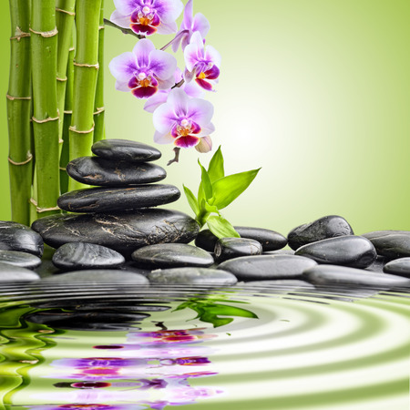 green orchid: zen basalt stones and orchid. focus on the orchid