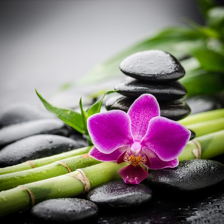 zen rocks: zen basalt stones and orchid. Stock Photo
