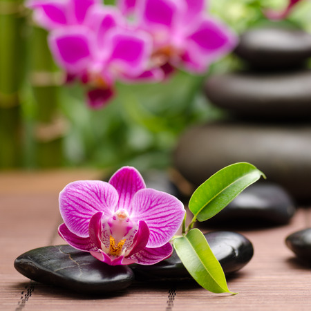 stone heap: spa concept with zen basalt stones and orchid Stock Photo