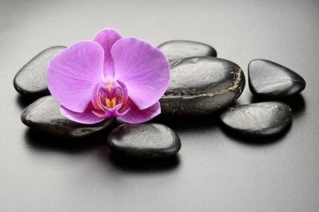 zen basalt stones and orchid. photo