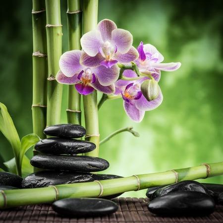 orchids: pietre di basalto zen, orchidee e bamb� Archivio Fotografico