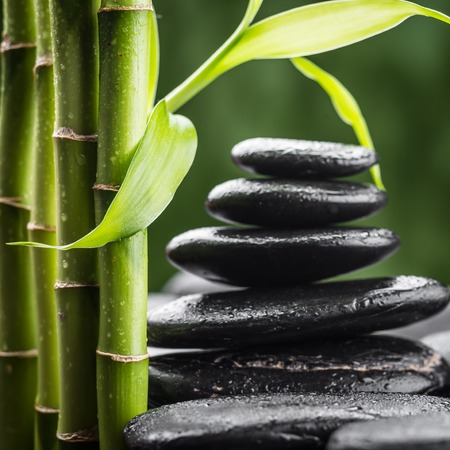 zen basalt stones and bamboo (focus on the bamboo leaf) photo