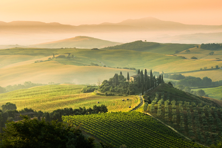 agriturismo: Beautiful summer landscape of Tuscany, Italy. Editorial