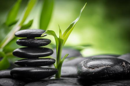 zen: zen basalt stones and bamboo