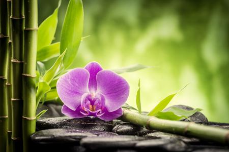bambou: pierres de basalte zen, orchidée et le bambou