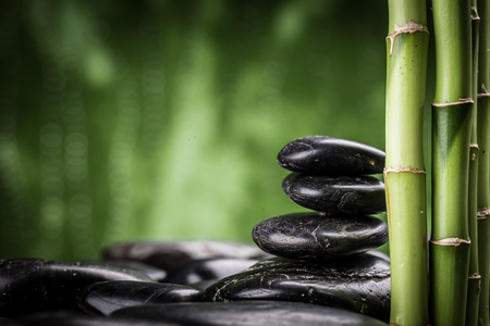 bambou: bambou et pierres basaltiques de zen